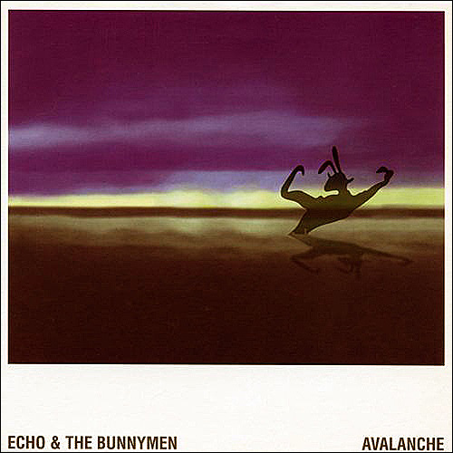 Echo and The Bunnymen Avalanche
